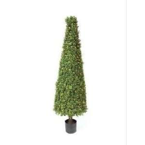 5 Winter Solace Pre Lit Potted Artificial Boxwood Cone