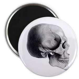 SKULL PROFILE Pencil Sketch Art 2.25 inch Fridge Magnet