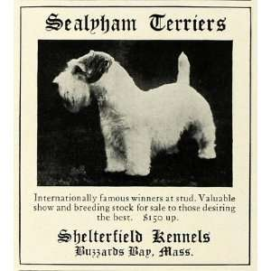 1931 Ad Sealyham Terrier Pet Dog Breeders Shelterfield Kennels