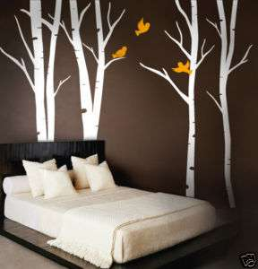 Wall Art Vinyl Decal Terrific Forest Birch Trees