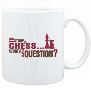 New  To Study Or Chess  What A Stupid Question ?  Mug