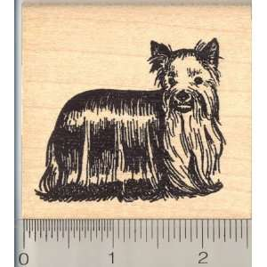 Yorkshire Terrier, Yorkie Dog Rubber Stamp Arts, Crafts