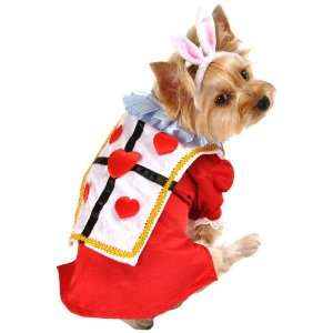 Anit Accessories White Rabbit Dog Costume, 8 Inch