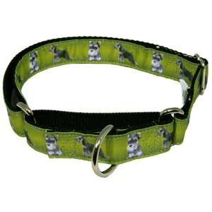 Schnauzer Designer Ribbon Martingale Dog Collar   Medium