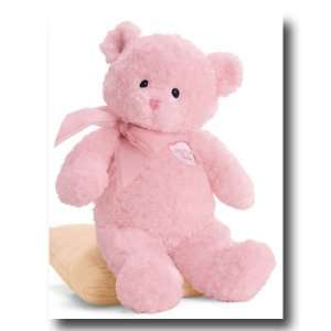 Gund, Inc. 58614 My 1st Teddy   Small Pink * 58614(GQB) Toys & Games